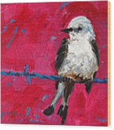 Baby Bird On A Wire Wood Print by Patricia Awapara