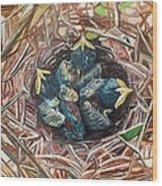 Baby Birds Wood Print