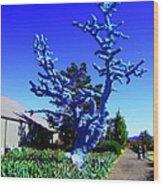 Baby Blue Tree Wood Print