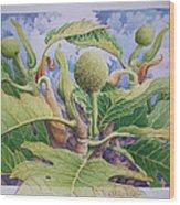 Baby Breadfruit Wood Print