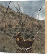 Baby Buggy In Wilderness Wood Print