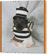 Baby Guinea Pig Trick Or Treat Wood Print