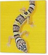 Baby Leopard Gecko Wood Print