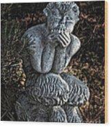 Baby Pan Statue Wood Print