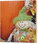 Baby Scarecrow Wood Print