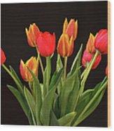 Baby Tulips Wood Print