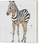 Baby Zebra Nursery Animal Art Wood Print