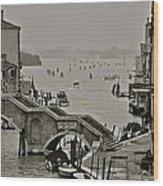 Back Door Of Venice Wood Print