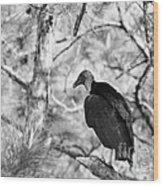 Back In Black Wood Print