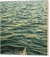 Back To The Sea Wood Print