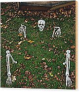 Back Yard Bone Yard Wood Print by LeeAnn McLaneGoetz McLaneGoetzStudioLLCcom