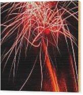Backyard Fireworks 2012 4 Wood Print
