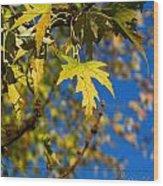 Backyard Leaves Wood Print
