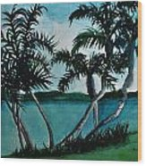 Backyard Palms Wood Print