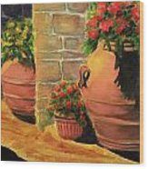 Backyard Pots Wood Print
