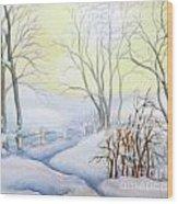 Backyard Winter Scene Wood Print
