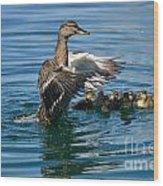 Bad Duck Rising Wood Print