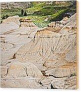 Badlands In Alberta Wood Print by Elena Elisseeva