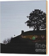 Bagend Dusk Wood Print by Linde Townsend