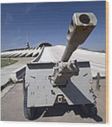 Baghdad, Iraq - An Iraqi Howitzer Sits Wood Print by Terry Moore