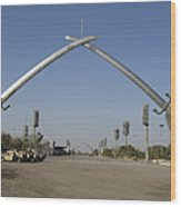 Baghdad, Iraq - Hands Of Victory Wood Print by Terry Moore