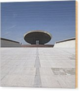 Baghdad, Iraq - The Ramp That Leads Wood Print by Terry Moore