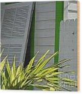 Bahama Conch House Wood Print