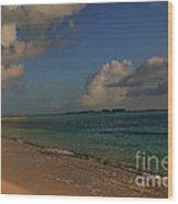 Bahama Ocean View Wood Print