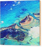 Bahama Out Island Filtered Wood Print