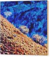 Baja California Coast - Sea Of Cortez Wood Print