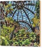Balboa Park Botanical Gardens Wood Print
