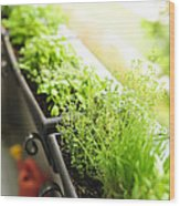 Balcony Herb Garden Wood Print