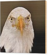 Bald Eagle Looking In Wood Print