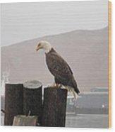 Bald Eagle On Piling Wood Print