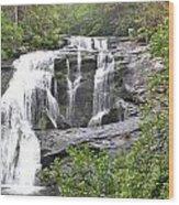 Bald River Falls  Wood Print