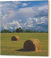 Bales Of Hay Wood Print