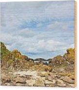 Ballintoy Bay Basalt Rock Wood Print