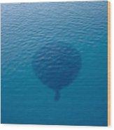 Balloon Shadow Wood Print
