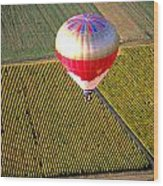 Ballooning Over Burgundy Wood Print