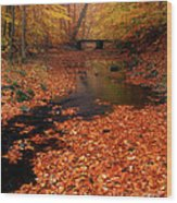Bamboo Brook Chester New Jersey Wood Print
