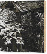 Bamboo Garden -2 Wood Print