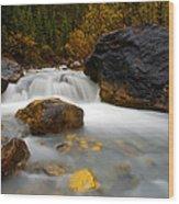 Banff - Autumn Creek Wood Print