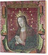 Banner Of Hernan Cortes Wood Print