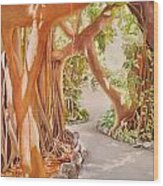 Banyan In The Afternoon Wood Print