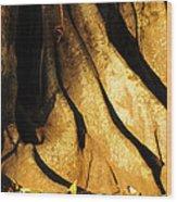 Banyonland Wood Print