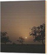 Baobab Trees Adansonia Digitata Wood Print
