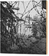 barbed wire across no mans land and restricted area of the UN buffer zone in the green line Wood Print