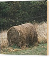 Barbed Wire Fence And Hay Roll Wood Print by Raymond Gehman