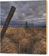 Barbed Wire Fence Posts With Dark Sky Wood Print