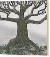 Bare Branches I Wood Print